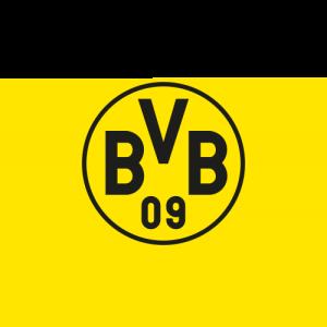 BVB_4c
